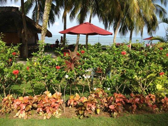 โรงแรมพาร์ครอยัลปีนัง: Tropical gardens