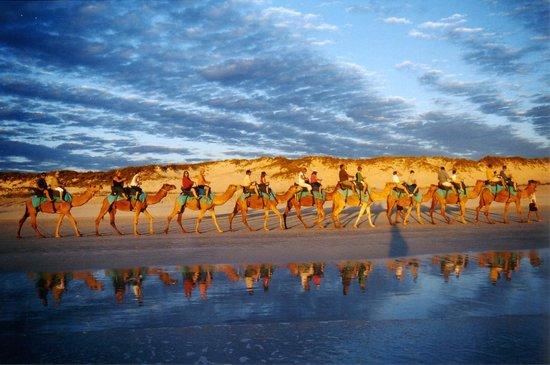 Cable Beach Camel rides