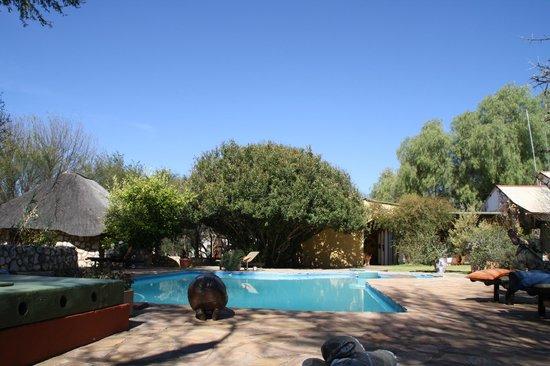 Kuzikus Wildlife Reserve Lodge :                   Der Swimming-Pool