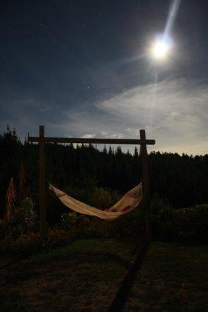 Awatea Tasman Bay :                   Nighly relaxation