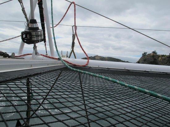 Island Sailing onboard Te Aura - Waiheke Island:                   nets
