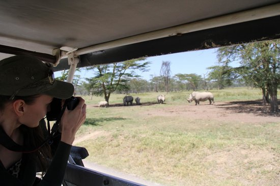 East Africa Adventure Tours and Safaris - Day Tours:                                     photo hunt