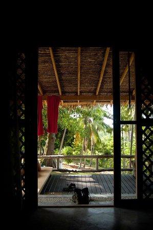 Jungle Club:                   Jungle bungalow