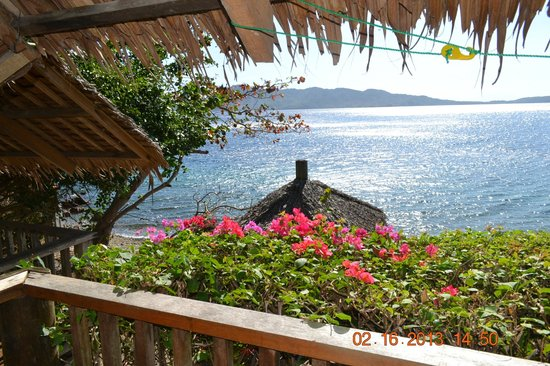 Balai Resort Anilao:                   View from the room