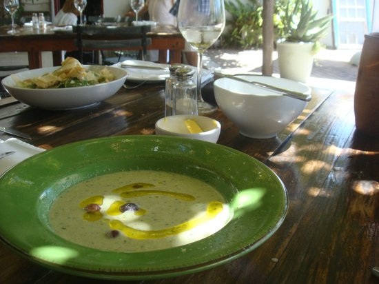 Havercrofts:                   Cold Cucumber soup