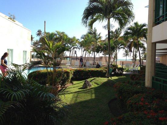 Parador Palmas De Lucia:                   Pool Area