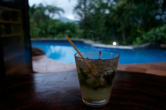 Lost Iguana Resort & Spa:                   Bar