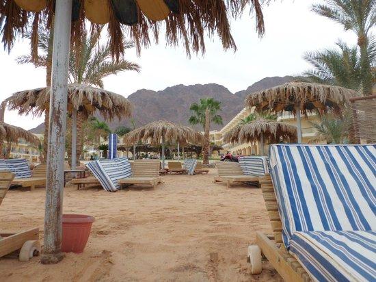 Sol Taba Red Sea:                   Strand