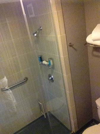 Aloft Denver International Airport:                   Interesting walk-in shower with soap dispensers. No tub.