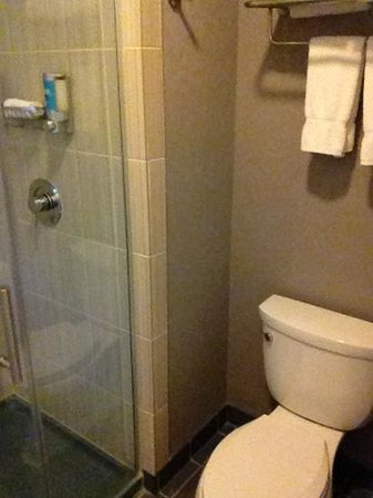 Aloft Denver International Airport :                   I know... it's just a bathroom, but you have to include everything in a review