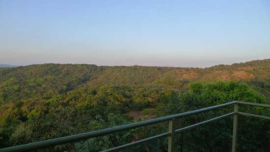 The Machan:                   View from the deck