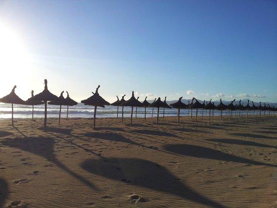 Grupotel Playa de Palma Suites & Spa:                   Strand