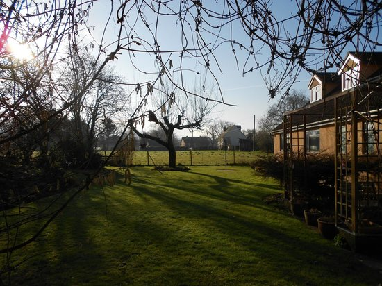 Marl Cottage Bed and Breakfast: Garden in early morning