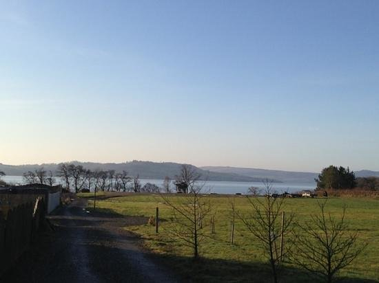 Oak Tree Inn:                   view from cottage