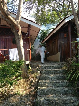 Red Frog Villas:                                     Fumigating our villa due to insect infestation