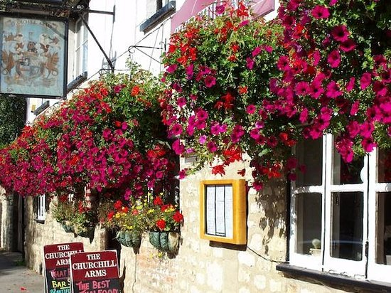 The Churchill Arms with Tutu's Thai: In bloom.