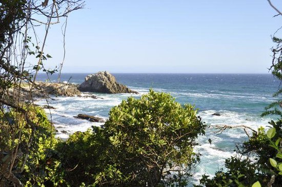 Hotel Plettenberg Bay:                   Nationalpark