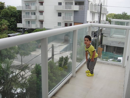 Habitat Residence:                   Apartment balcony
