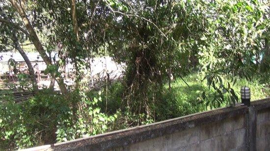 Chaya Resort:                   Baustelle mit Mauer
