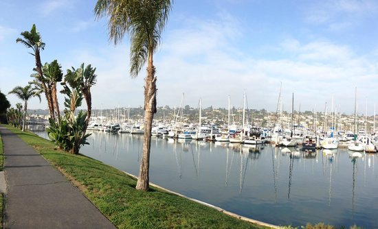 BEST WESTERN PLUS Island Palms Hotel & Marina: View (if you have room facing the marina)