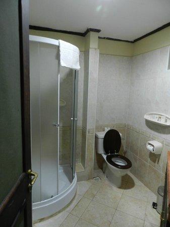Cassia Lodge:                   シャワーのみのバスルーム