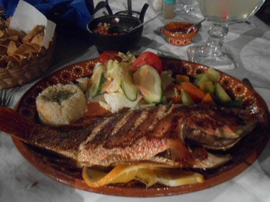 Hotel Casa Dona Susana:                   Los 3 Delfinis dinner only (  next door  ) - dining on grilled red snapper