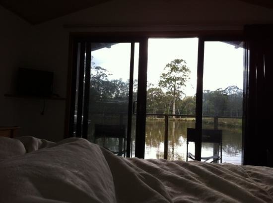 Worrowing Jervis Bay Eco Resort: the view from the bed