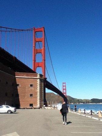 San Francisco Movie Tours:                   San Francisco's top star.