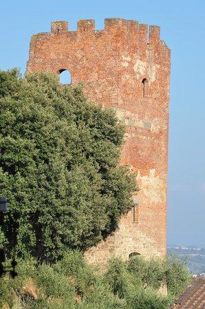 Fucecchio, Ιταλία:                   Torre Grossa vista dall'alto