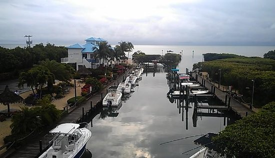 Ocean Pointe Suites at Key Largo:                   view from our patio