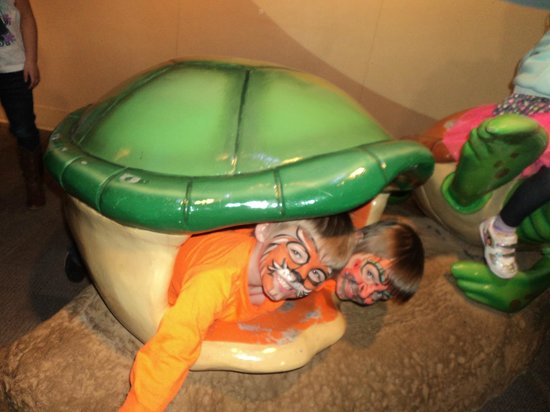Adventure Aquarium:                   Two Headed turtle!