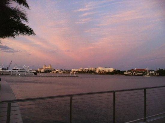 Clematis Street:                   The Marina
