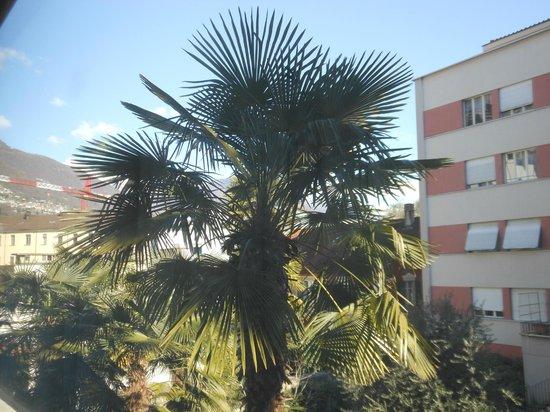 Hotel Dell'Angelo:                   Aussicht aus der Wohnung