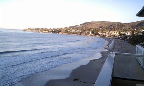 Pacific Edge Hotel on Laguna Beach:                   view. very nice