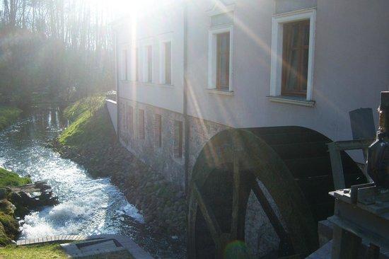 Gut Klostermühle: Restaurant Klostermühle mit eigenen Fischteichen