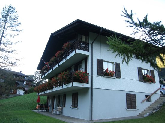 Hotel Kirchbühl: the hilty hus chalet