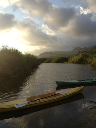 Luna Lodge: sunset kayak trip