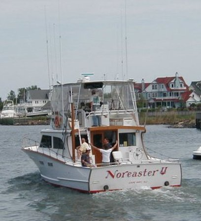 Noreaster 11 sport fishing cape may nj top tips before for Cape may fishing charters