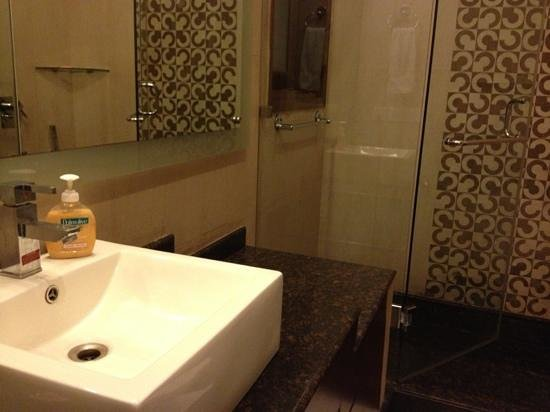 Saket Bed and Breakfast: bathroom