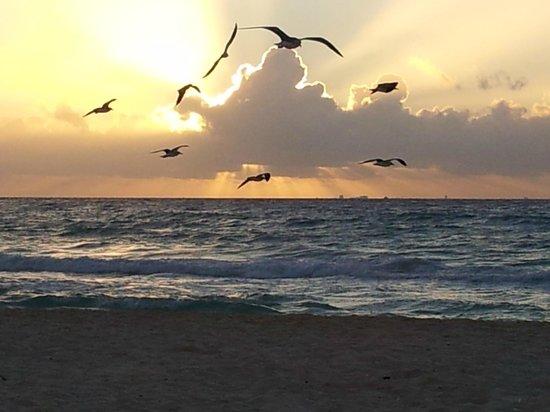 Iberostar Quetzal Playacar: Gorgeous!