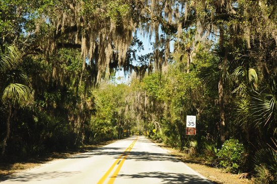 10 things to do near gamble rogers memorial state recreation area rh tripadvisor com