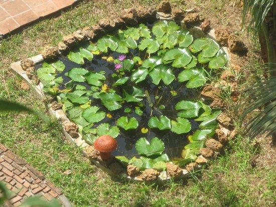 Shravanam Greens :                   Heart shaped small pond