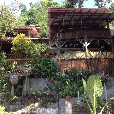 Hostel Plinio:                   Hostel