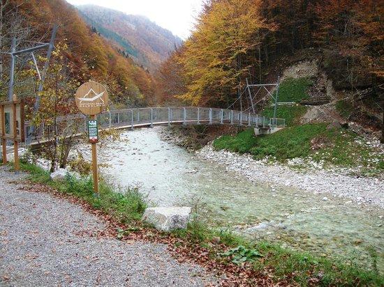 Reichraming, Austria:                   Drahtseilbrücke zum Buchensteig