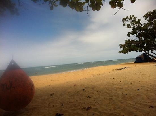 Satu Beach:                   Bar do Pitu