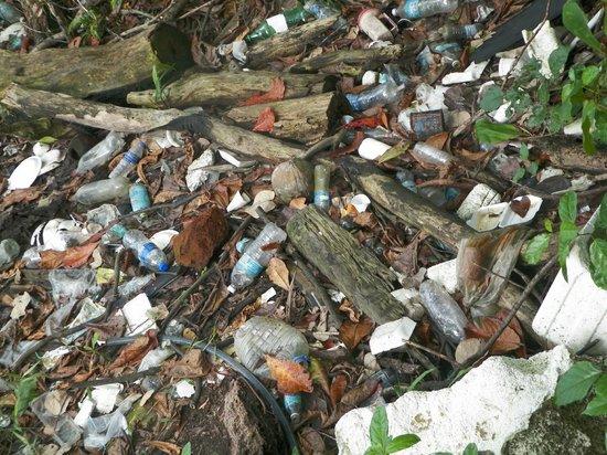 Nipah Bay Villa: pulao pangkor: the garbage island