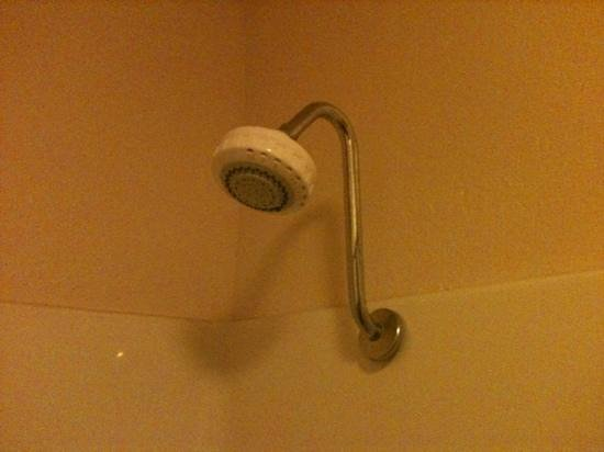 Quality Inn & Suites Gilroy:                   great shower, lots of hot water