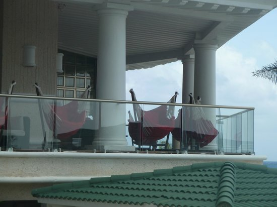 Sandos Cancun Luxury Resort:                   relaxing hammock chairs overlooking pools and beach