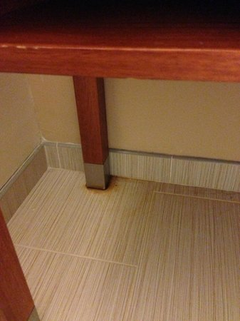 Four Points by Sheraton Suites Tampa Airport Westshore:                   strange stains