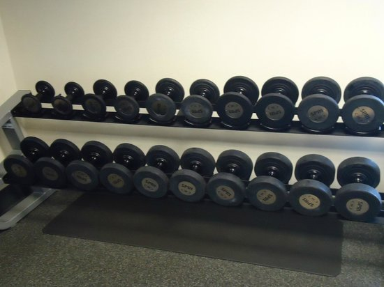 Hampton Inn & Suites St. Louis/South I-55: Assorted dumbells